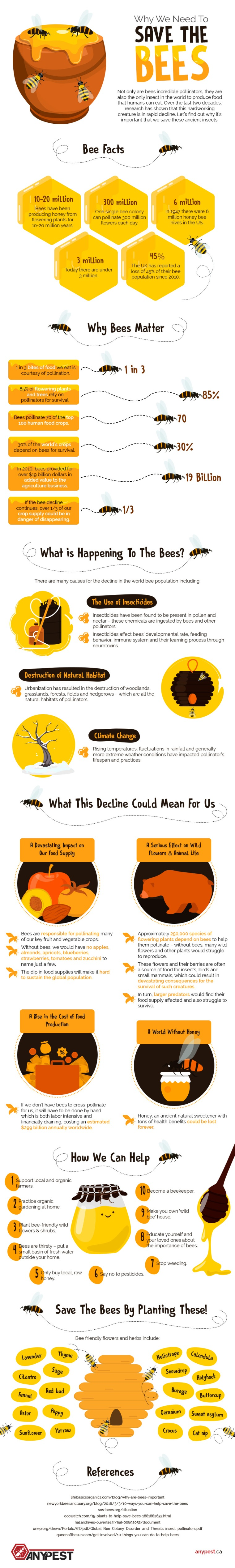 Why we Need to Save the Bees [Infographic] | ecogreenlove