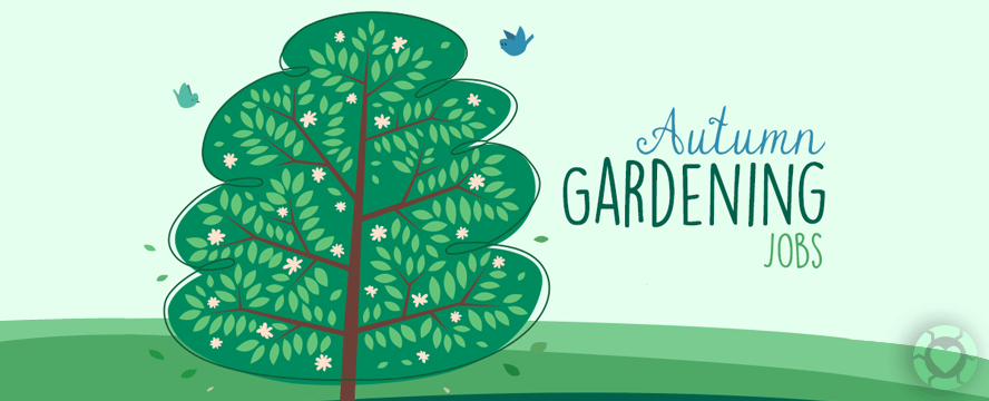 Autumn Gardening Jobs [Infographic] | ecogreenlove