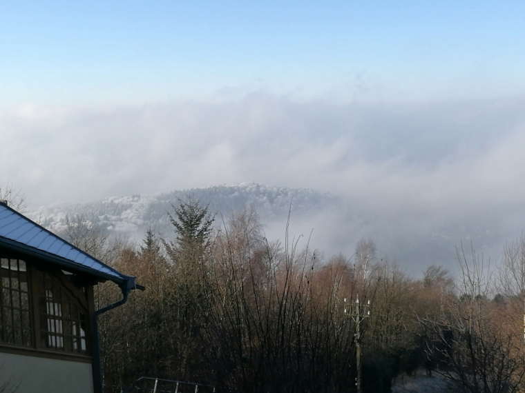 Winter in Heidelberg | ecogreenlove