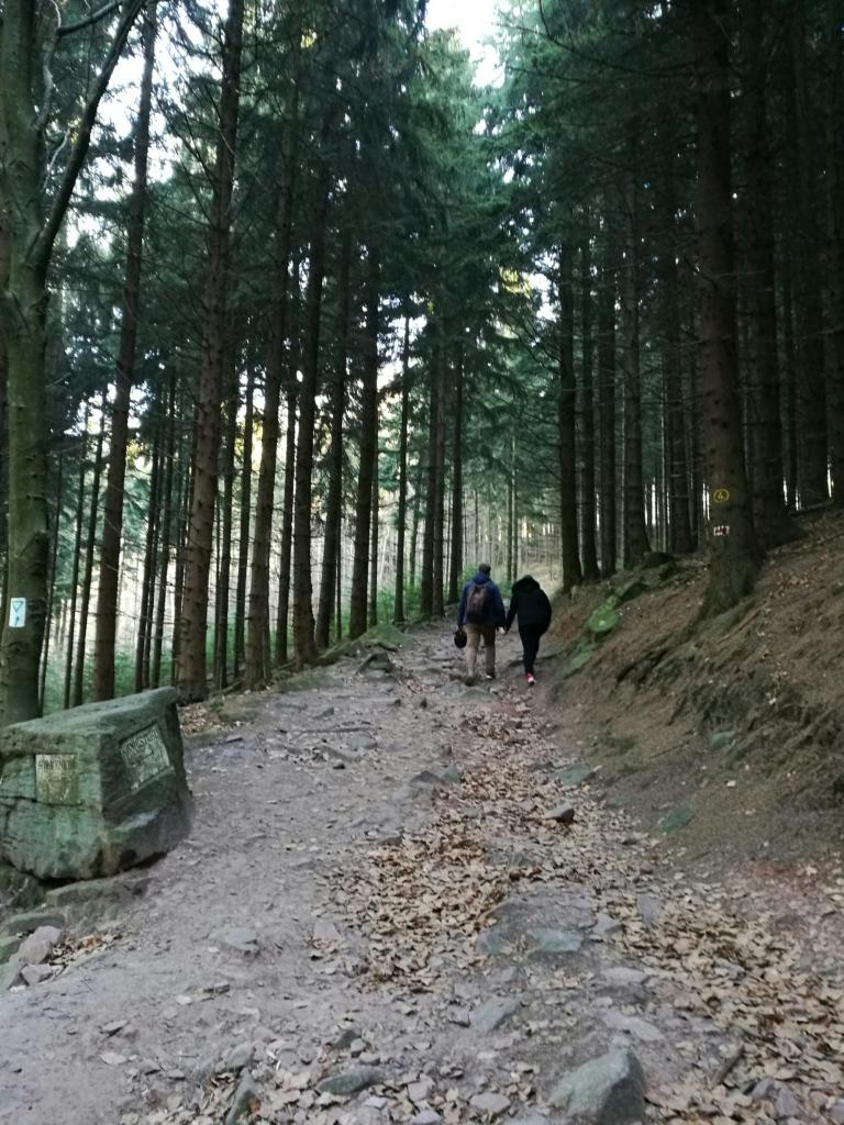 Winter in Heidelberg   ecogreenlove