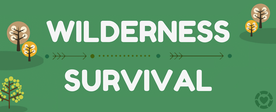 Surviving in Wilderness [Infographic] | ecogreenlove