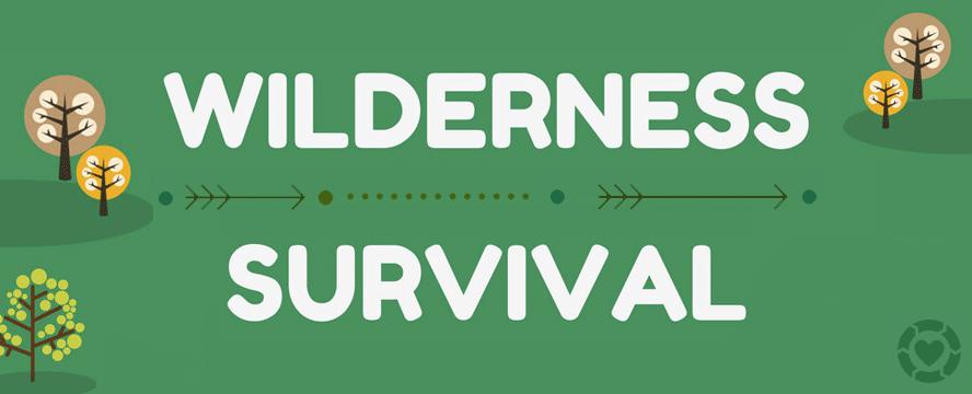 Surviving in Wilderness [Infographic] | ecogreenlove