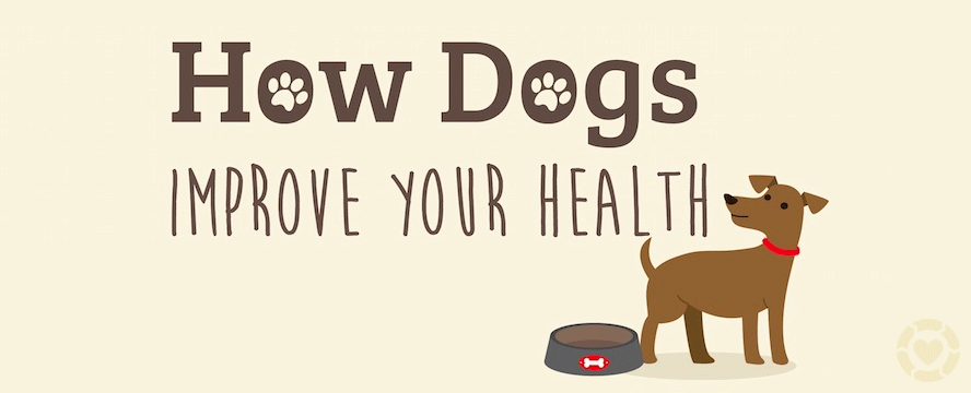 How Dogs improve your Health [Infographic] | ecogreenlove