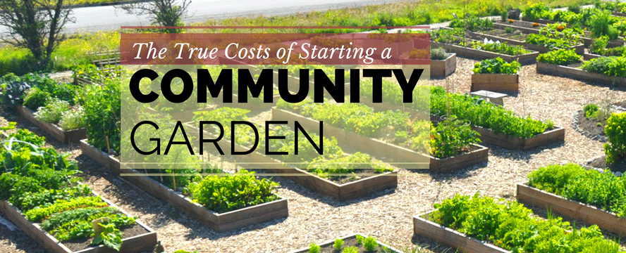 The True Costs of Starting a Community Garden | ecogreenlove