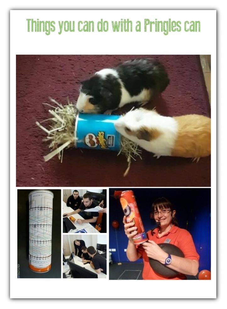 Creative Ways to Repurpose Pringles tube cans | ecogreenlove