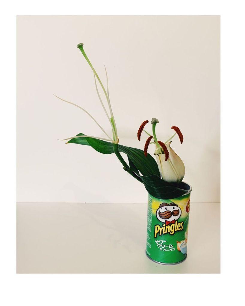 Flower vase • Creative Ways to Repurpose Pringles can tubes | ecogreenlove