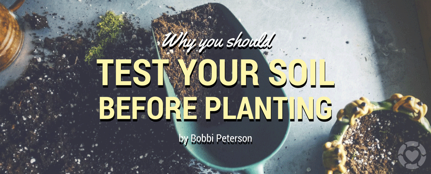 Why you Should Test your Soil before Planting | ecogreenlove
