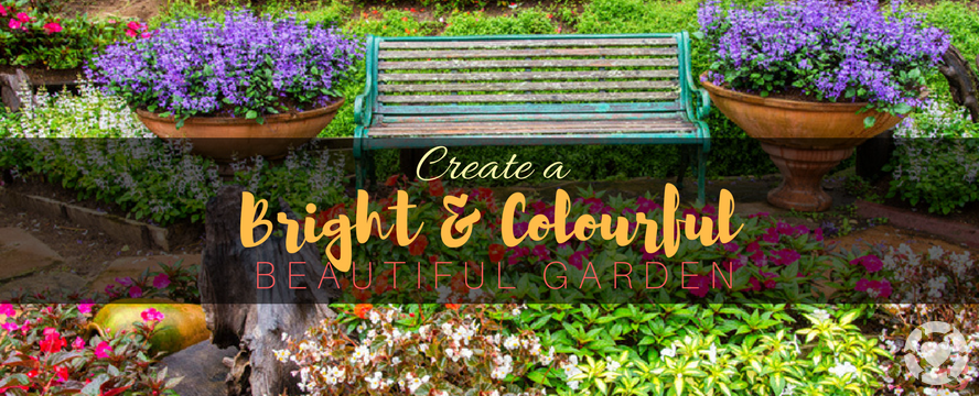 Create a bright Colourful Garden | ecogreenlove