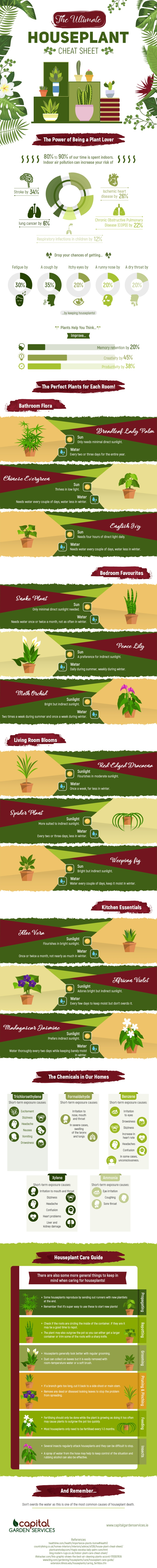 Houseplant Cheat Sheet [Infographic] | ecogreenlove