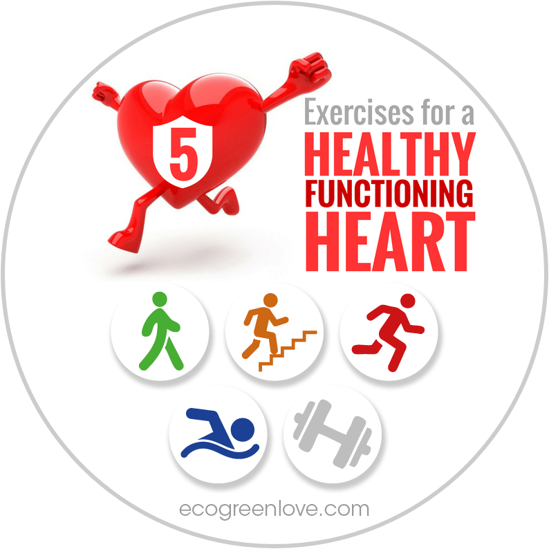 Best Exercises for a Healthy Heart   ecogreenlove