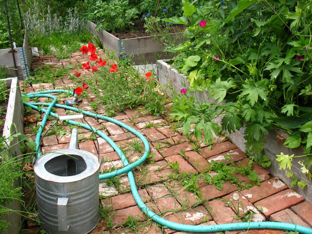 6 Essential Tools for Gardeners   ecogreenlove