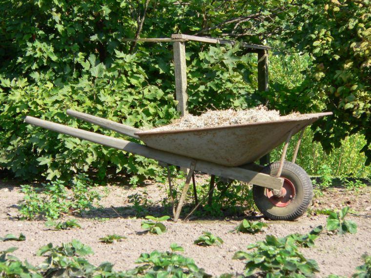 6 Essential Tools for Gardeners | ecogreenlove