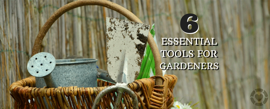 6 Essential Tools for Gardeners | ecogreenlove