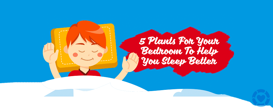 Plants to help you Sleep Better [Infographic] | ecogreenlove