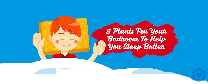 Plants to help you Sleep Better [Infographic] | ecogreenlove