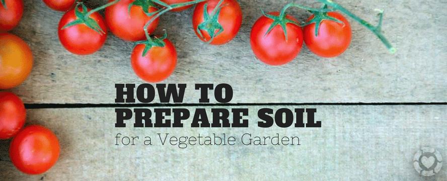 How to prepare Soil for a Vegetable Garden | ecogreenlove