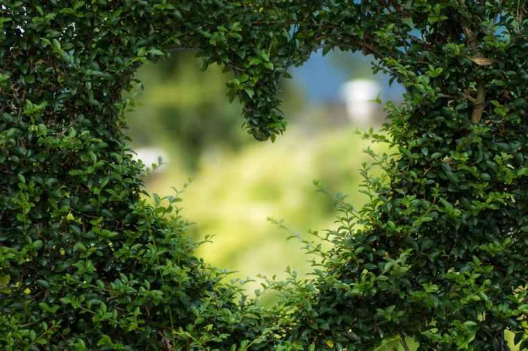 DIY Eco-Friendly Backyard | ecogreenlove