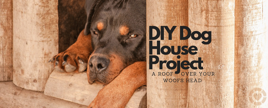 DIY Dog House Project: a roof over your woofs head