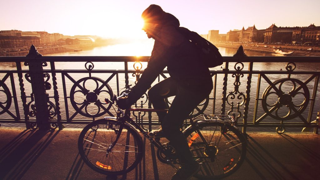 The Eco Guide to Bike-Sharing   ecogreenlove