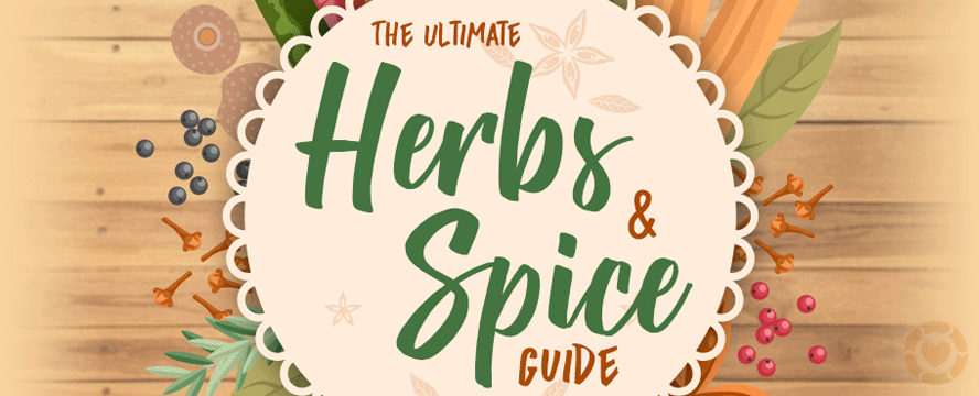 The Ultimate Herbs & Spice Guide [Infographic] | ecogreenlove