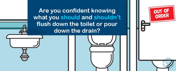 What the Flush! [Infographics]   ecogreenlove