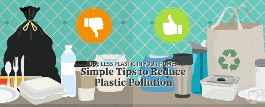 Use Less Plastic in Your Home [Infographic] | ecogreenlove