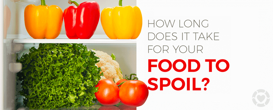 How long does it take Food to Spoil? [Infographic] | ecogreenlove
