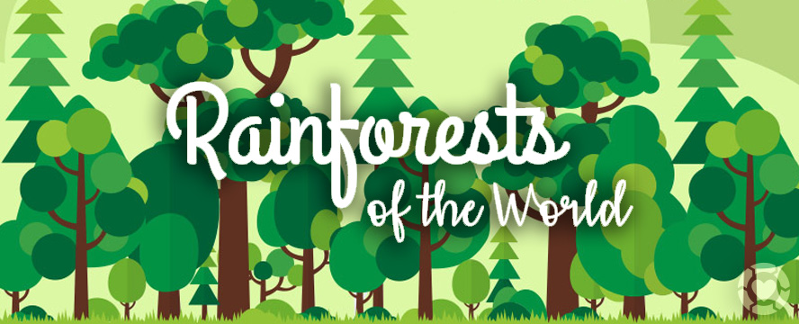 Rainforests of the World [Infographic]