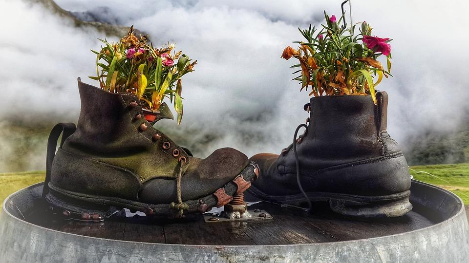 7 Tips for reducing Waste in your Garden   ecogreenlove