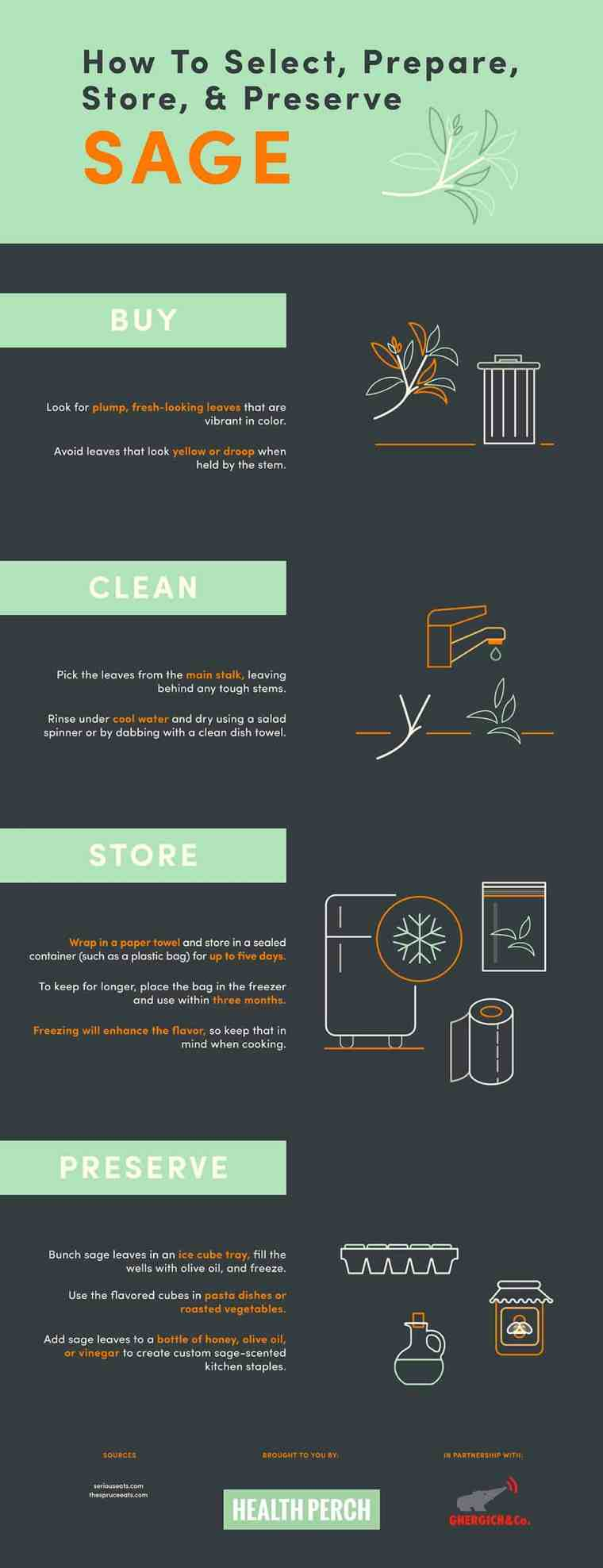 How to select, prepare, store and preserve Sage [Infographic] | ecogreenlove