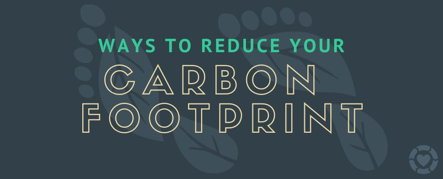 Ways to Reduce your Carbon Footprint [Visual] | ecogreenlove
