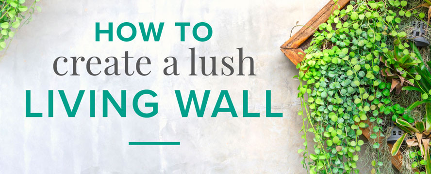 The Benefits of a Plant Wall [Infographic] | ecogreenlove