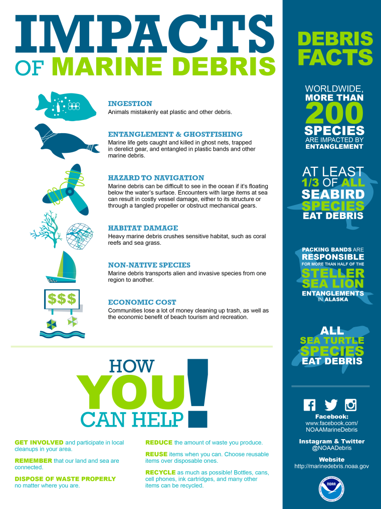 Marine Debris [Infographic] | ecogreenlove