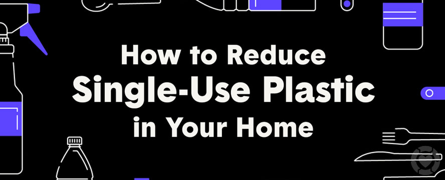 Reduce Single-Use Plastic in your Home [Infographic] | ecogreenlove