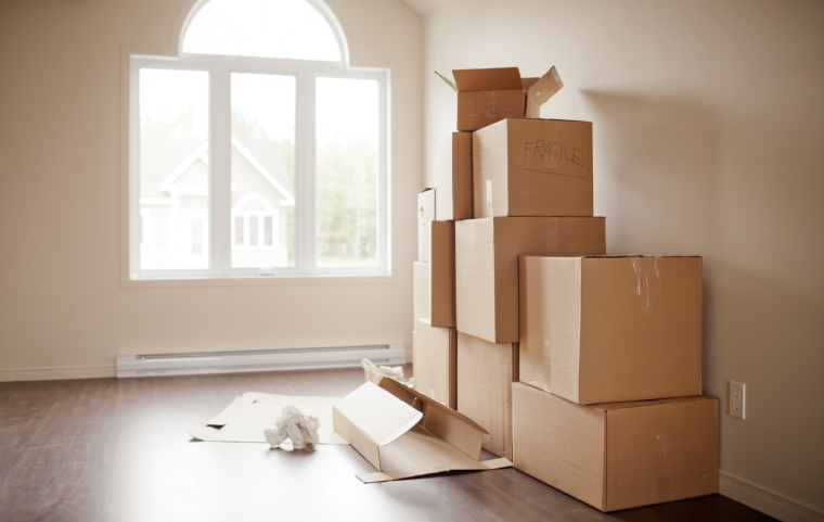 A Complete Guide to an Eco-Conscious Move | ecogreenlove