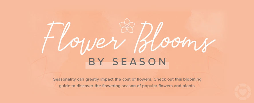 Flower blooms by Season [Visual] | ecogreenlove