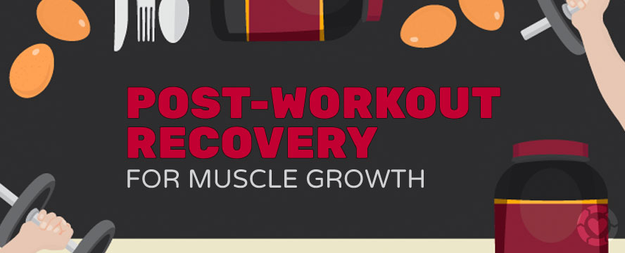 Post-Workout Recovery for Muscle Growth [Visual]