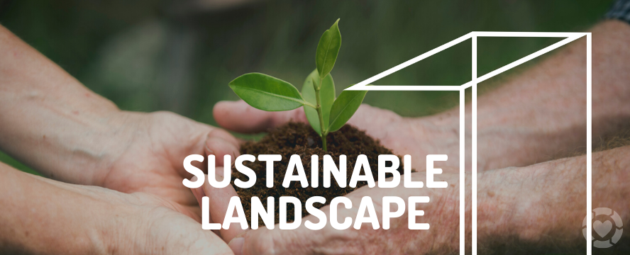 Sustainable Ideas for your Landscape Makeover | ecogreenlove
