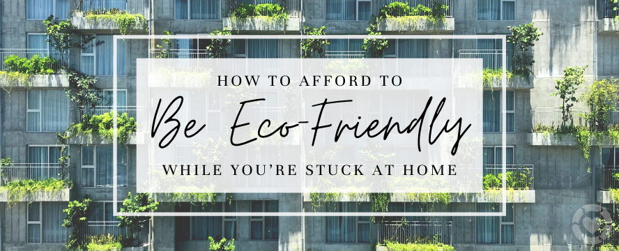 How to afford to Be Eco-Friendly while you're Stuck at Home | ecogreenlove