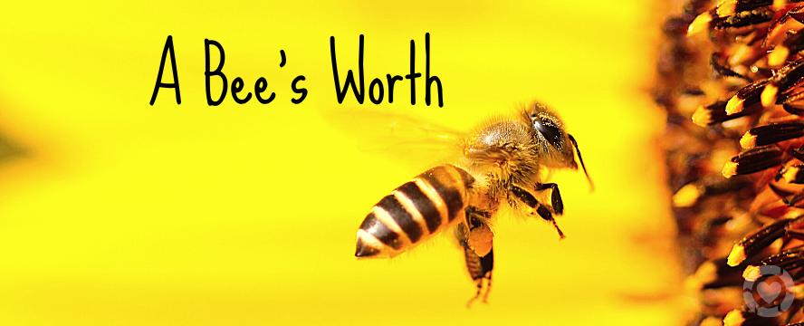 A Bee's Worth [Visuals] | ecogreenlove