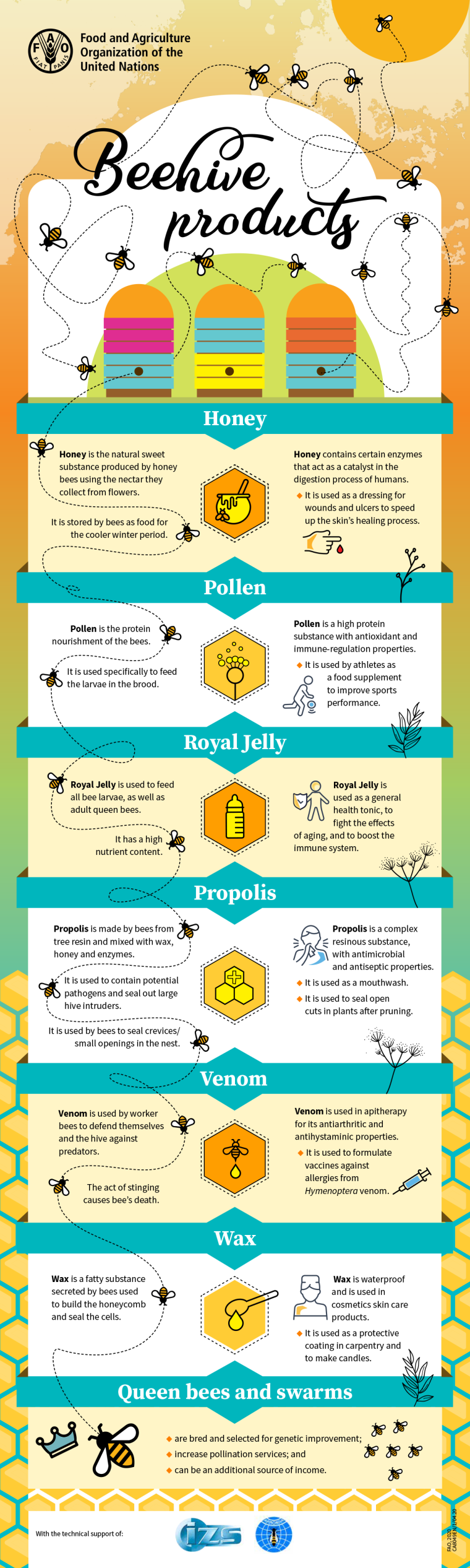 bees pollinators bee facts beehive products