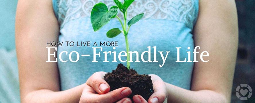 How to Live a more Eco-Friendly Life | ecogreenlove