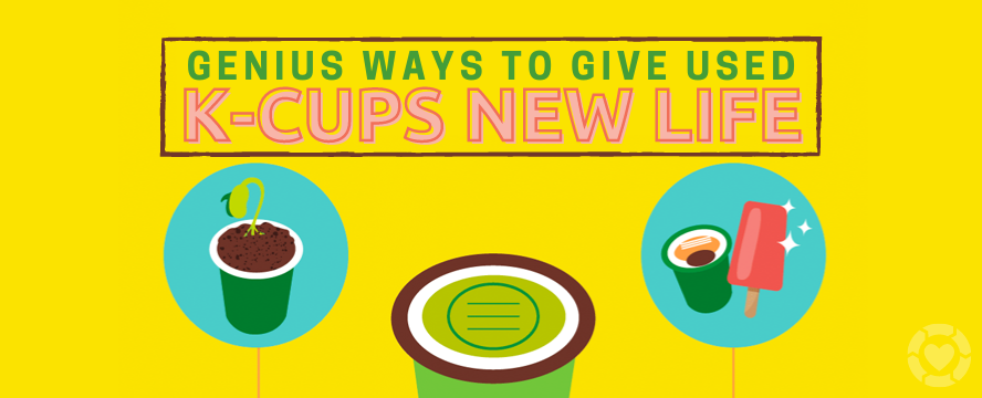 Genius Ways to Repurpose K-Cups [Visual] | ecogreenlove