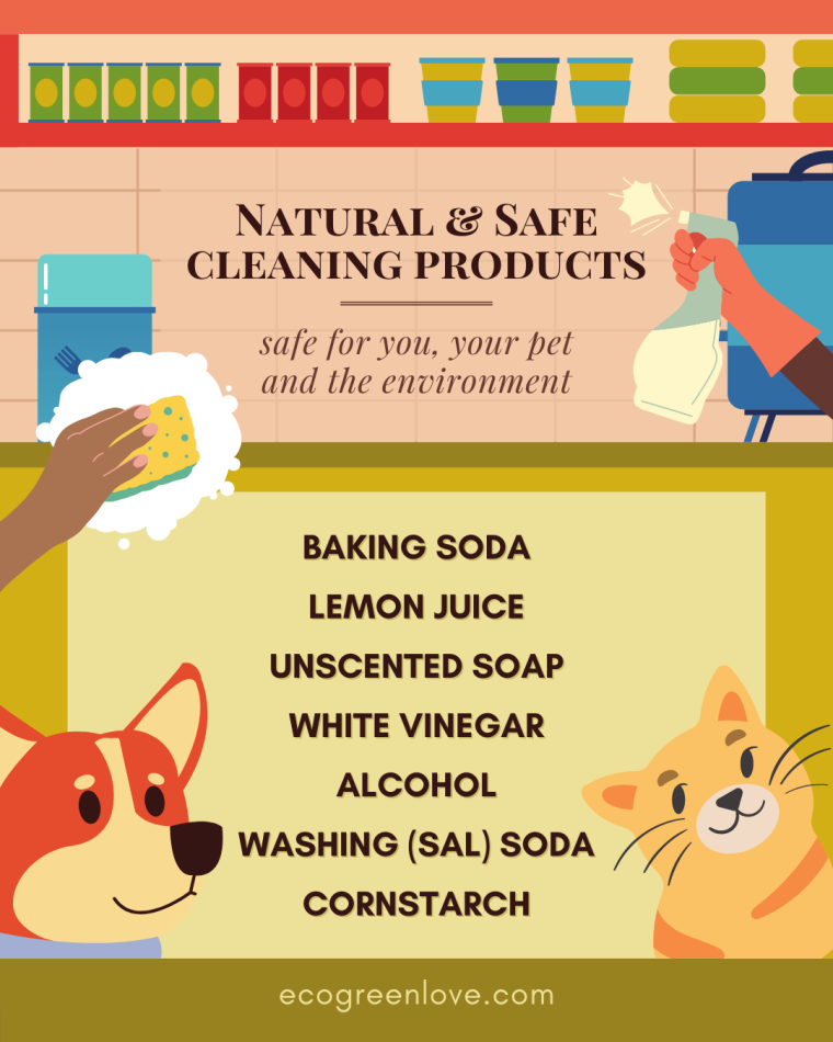 Eco-friendly house cleaning tips if you own a pet | ecogreenlove