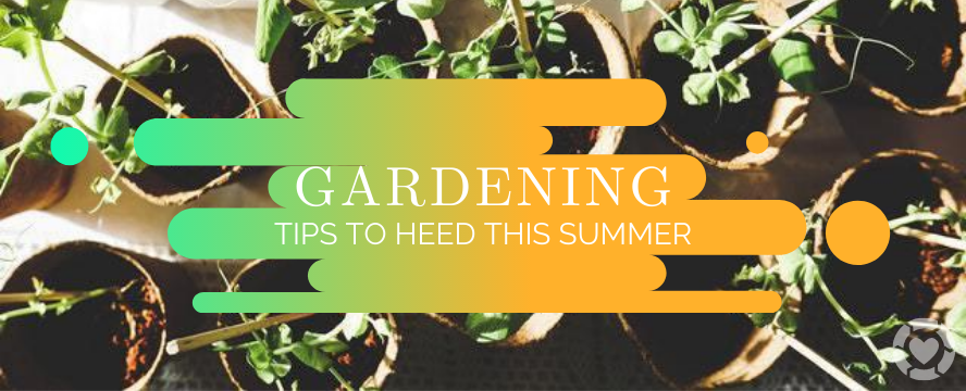 Gardening Tips to Heed This Summer | ecogreenlove
