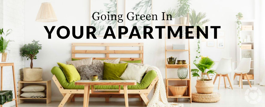 Going Green in your Apartment [Infographic] | ecogreenlove