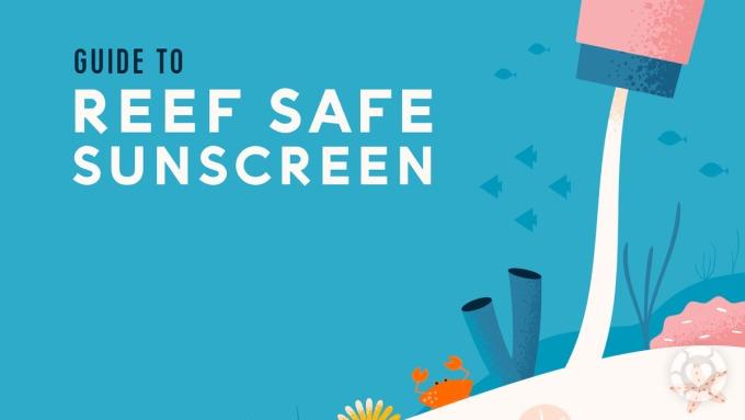 Reef Safe Sunscreen Guide [Visual] | ecogreenlove