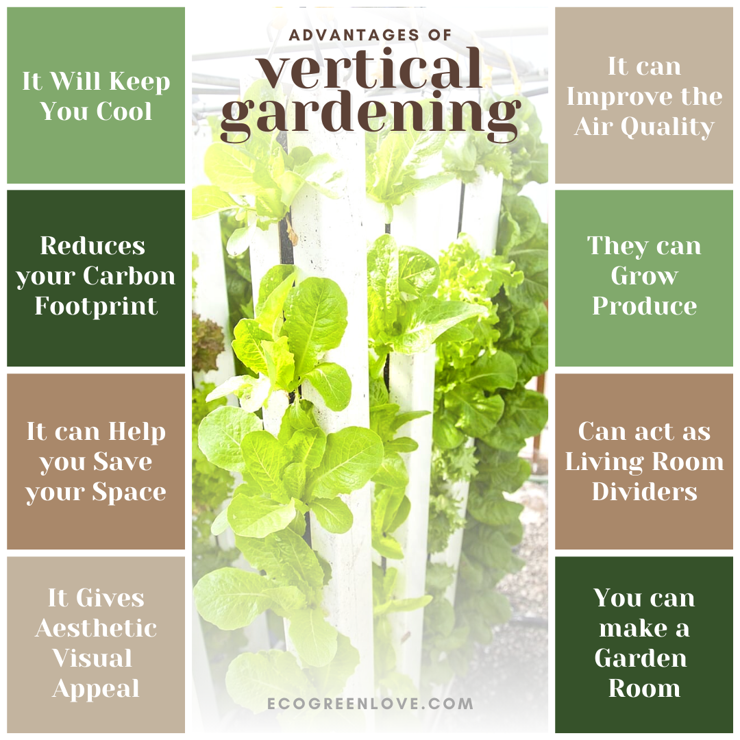 Amazing Advantages of Vertical Gardening | ecogreenlove