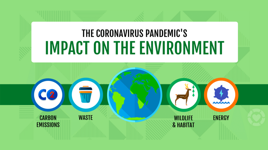 The Coronavirus Impact on the Environment [Infographic] | ecogreenlove