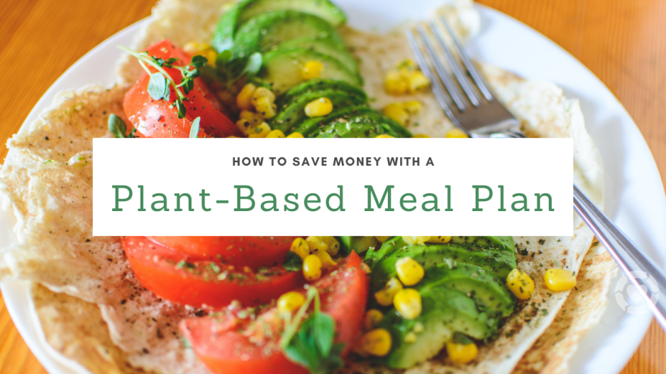 How to Save Money with a Plant-Based Meal Plan | ecogreenlove